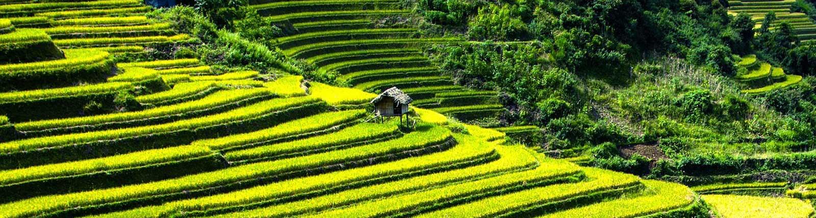Vakantiehuis Vietnam, Zuid-Vietnam