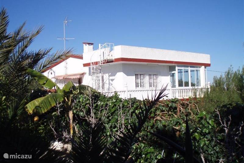 finca finca alegria in san fulgencio la marina costa blanca spanien mieten micazu. Black Bedroom Furniture Sets. Home Design Ideas