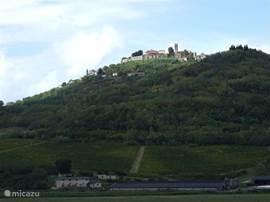 Motovun. Als een ridderkasteel is dit stadje gebouwd. je kunt de laatste 350 meter tot het slot alleen te voet bereiken. Ook een rit in de omgeving door het groene hart van Istrië,met veel wijnbouw,toont een welvarend gebied.