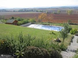 Garden with swimming pool.
