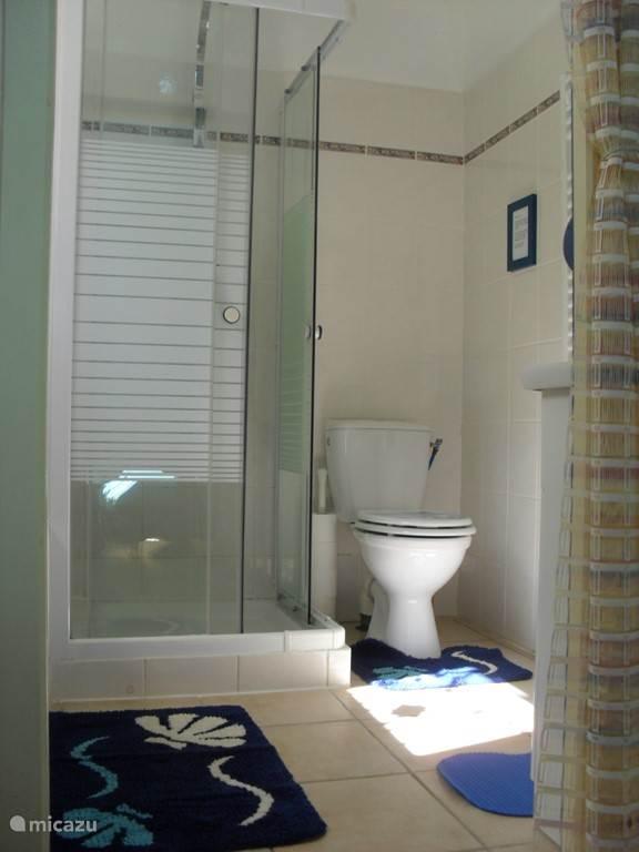 De blauwe badkamer, met luxe douche en en een vorstelijk bad.
