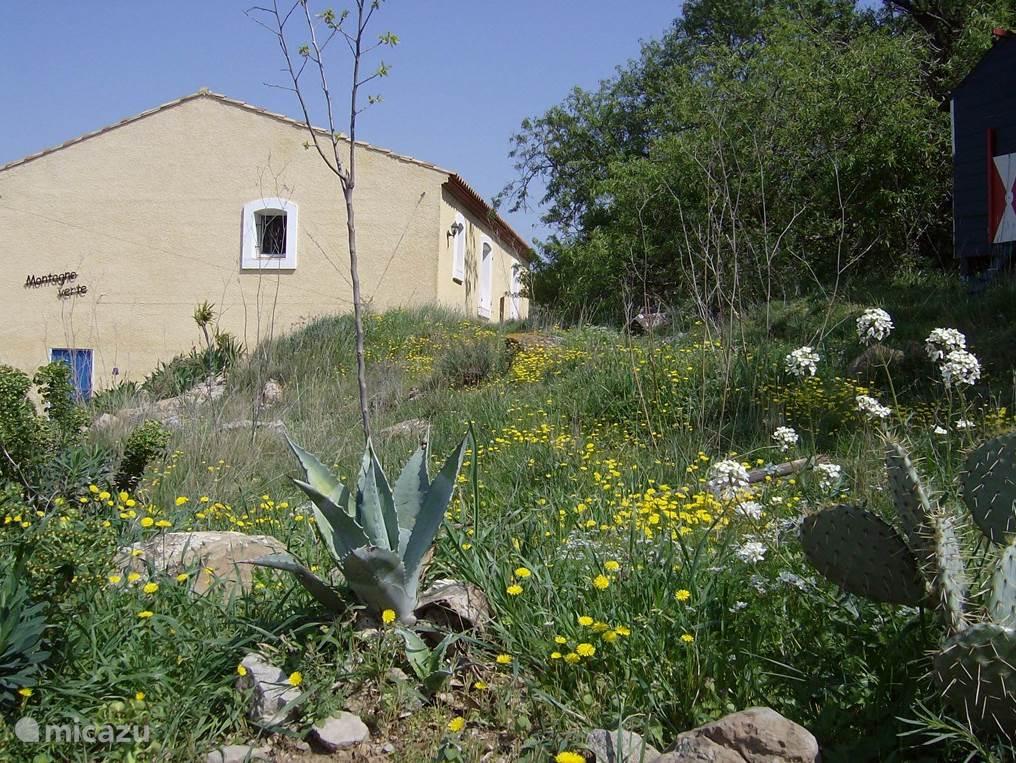 De achterkant van de villa vanaf het parkeerterein, prachtig in de natuur en geheel vrijstaand.