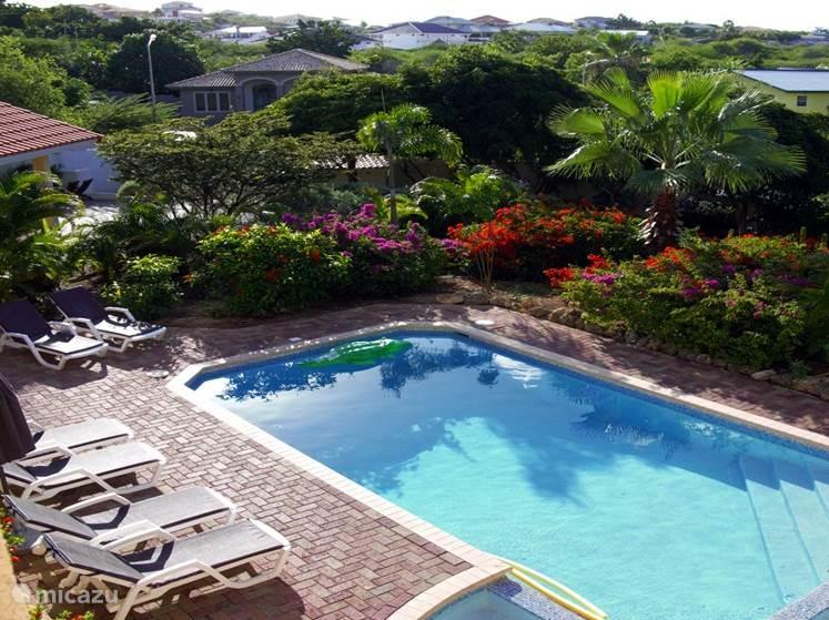 De tuin, het zwembad en het kinderbad