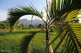 Tuin (6000 m2). 3BR Villa (2).