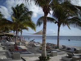 Papagajo beach 4 auto minuten van af Villa Stella