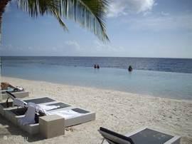 Papagajo beach met een veilig en makkelijk toegangkelijk zee zwembad