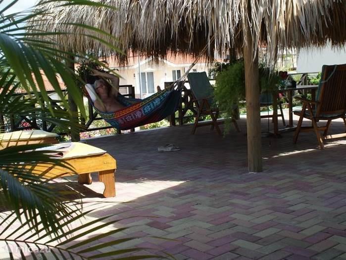 Het grote terras met liggbedden en hangmat om intens te kunnen luieren en genieten.