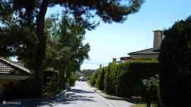 Het parkje, aan de zuidkant van Kusadasi, ligt op een heuvel waardoor het uitzicht fenomenaal is.