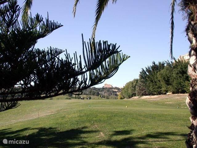 Golf banen