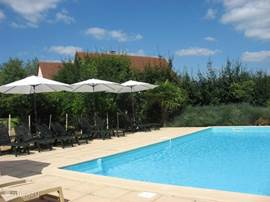 Fenced heated swimming pool [25-27C] with alarm, solar shower, parasols and sunbeds for everyone