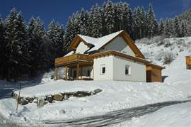 Villa Vicana both in winter and in summer an ideal destination! In winter the Nassfeld ski resort in summer relatively many sunny hours due to its location on the south side of the Alps! Course Gailtalgolf in 5 minutes, Presseggersee, Weissensee, Faakersee, hiking, mountain biking, rafting etc.