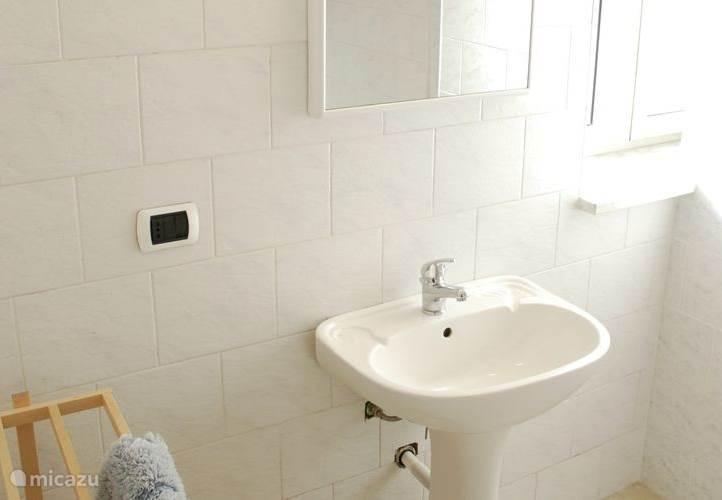 Appartement 2: wastafel in de badkamer met toilet en douche