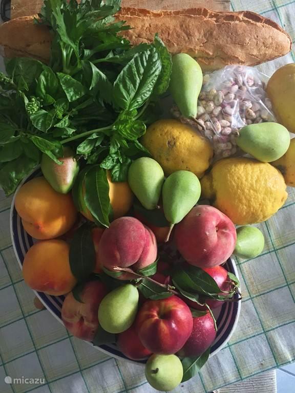 Locale verse producten en citroenen van onze boom!