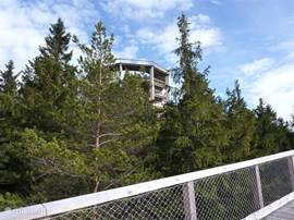The treetop walkway gives you an amazing view over Lipno, the Lake and the ski-area.