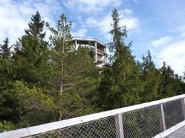 Het 675m lange boomkruintoppenpad bied een adembenemend mooi uitzicht!