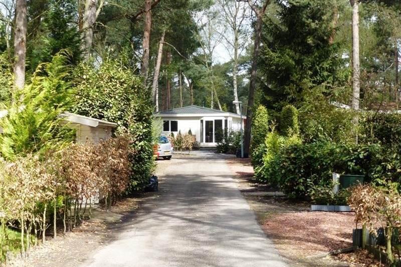 Vakantiehuis Nederland, Gelderland, Beekbergen Chalet Valouwe P11, Veluwe