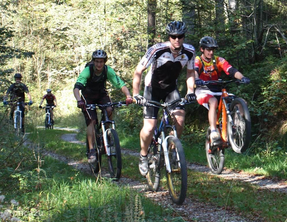 Mountainbiken in de Harz