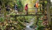 Wandelen en wandeltochten in de Harz