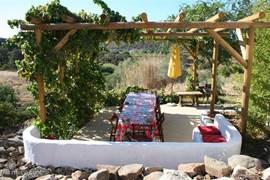 Het druiventerras met barbecue. Hier kunt u in de schaduw heerlijk lunchen of dineren. Als de druiven rijp zijn, kunt u ze boven uw hoofd plukken.