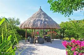 Large palapa in the back garden. This palapa is equipped with electricity. A great place for a sunset drink and so to enjoy the dark.