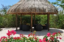 Large rear garden palapa lounge with modern furniture. A romantic evening under the palapa while enjoying a snack or a drink.