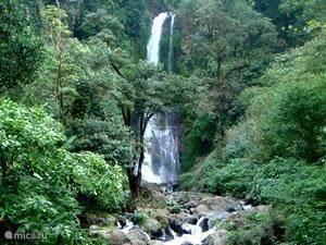 Gitgit waterfall Singaraja