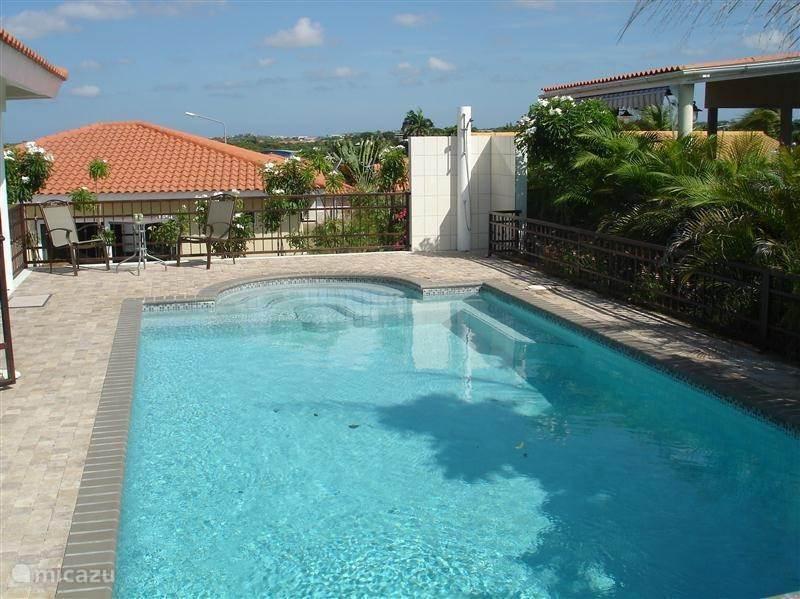 Alternatief: zonnige vakantie op Curacao?