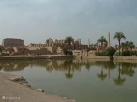 Einer der vielen historischen Stätten in und um Luxor, Karnak-Tempel. Diese und viele andere Ausflüge können wir für Sie organisieren.