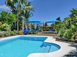 Gemeenschappelijk zwembad met zonnenterras
