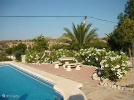 Zwembad met stenen tuinset waar het  gezellig is, om samen iets te drinken.