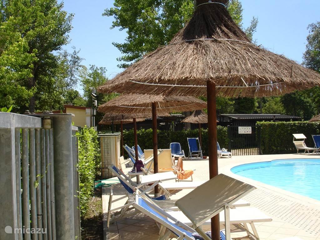 Zwembad met gratis ligstoelen. Het dragen van een zwemshort is toegestaan, het dragen van een badmuts is verplicht.