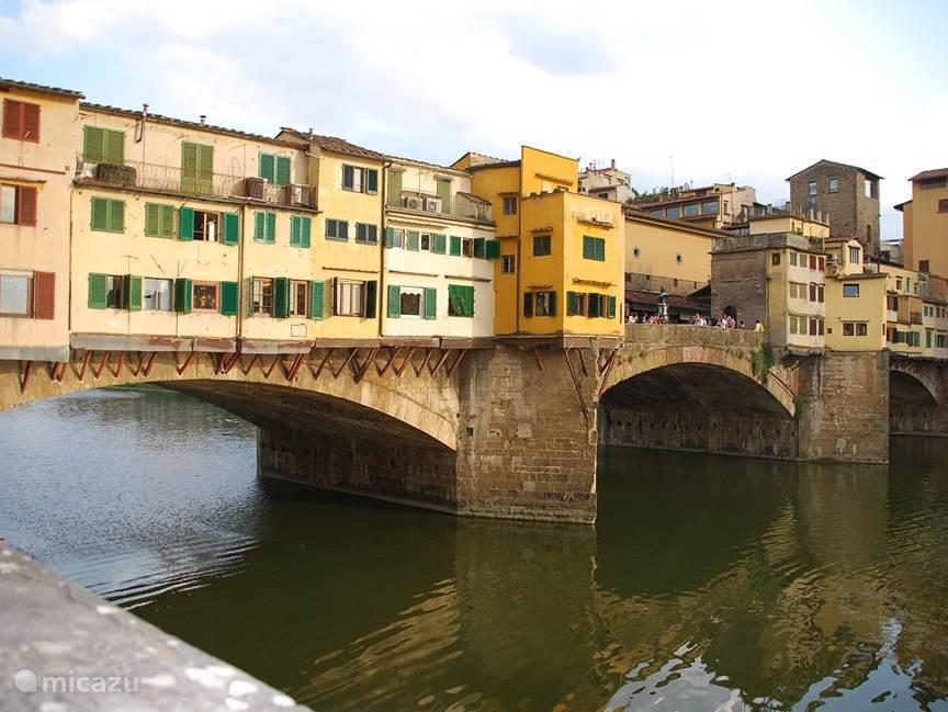 Wissel een heerlijke stranddag af met een bezoek aan Firenze. Een geweldige stad om te ontdekken!!