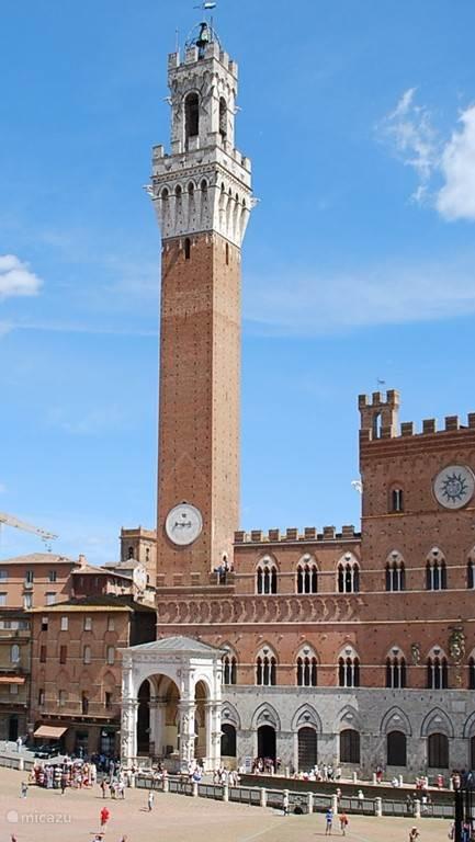 Siena is niet zo'n grote stad en kan met gemak per voet ontdekt worden. Het heeft een mooie mystieke Duomo (volgens kenners de mooiste ter wereld) en natuurlijk het beroemde plein, de Piazza del Campo.
