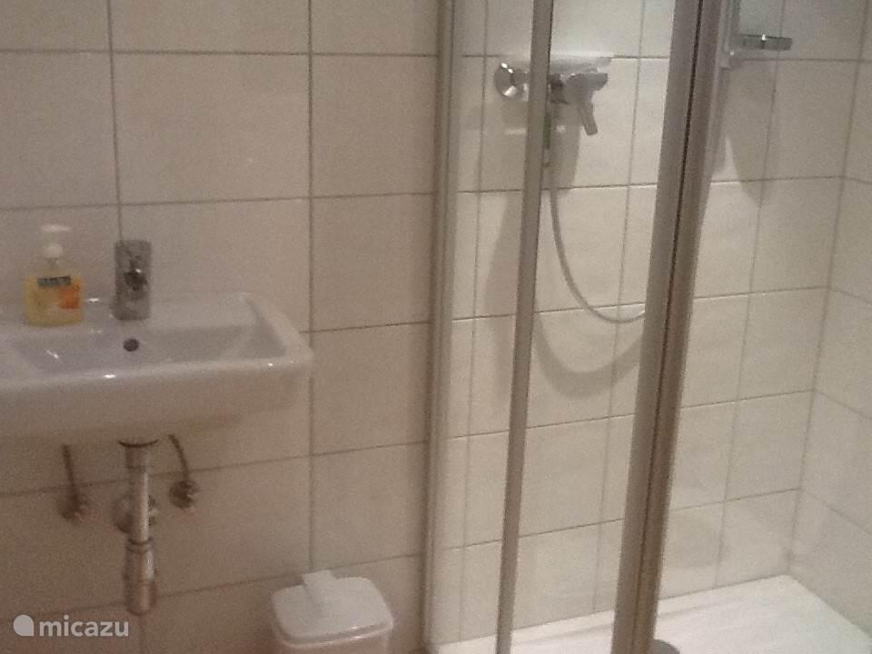 Keurig vernieuwde badkamer met toilet.