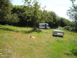 In the orchard you can use a caravan or trailer tent sleeping