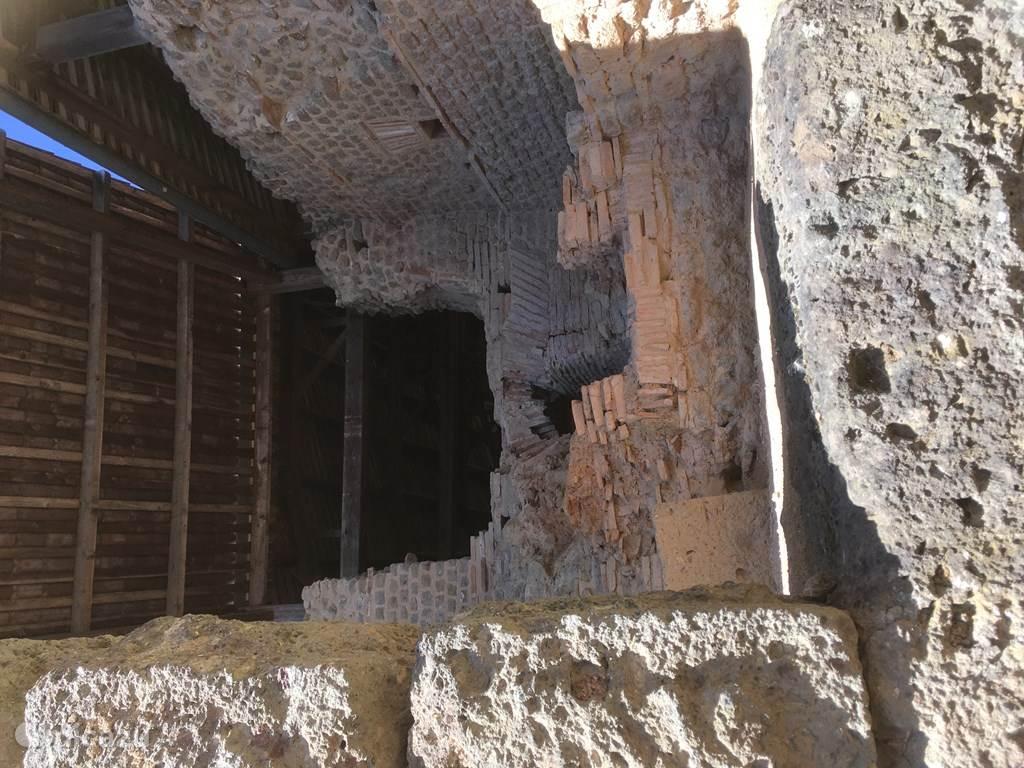 Cassinomagus Parc Archeologique