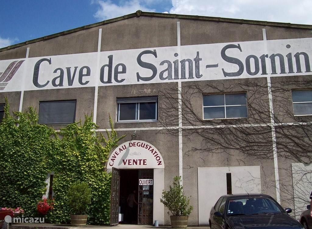 Vineyard and cave de Saint Sornin