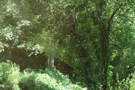 De natuurlijke omgeving