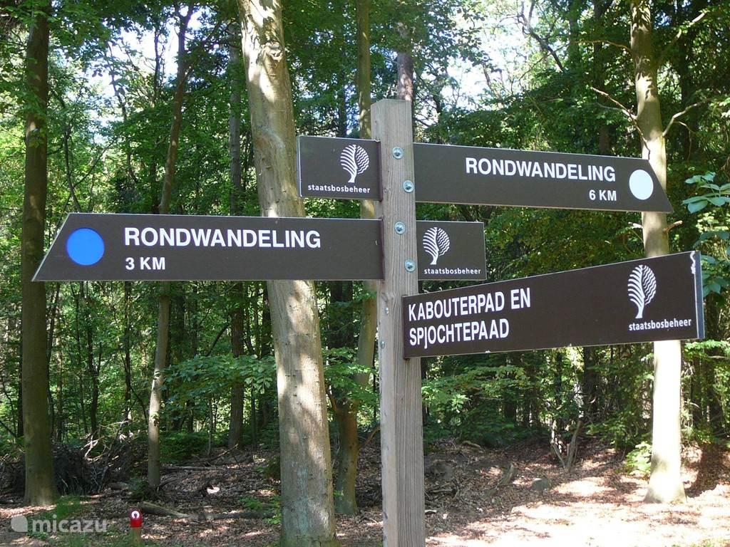 Het zeer gevarieerde cultuurlandschap rondom Oudemirdum kan gemakkelijk per fiets en te voet worden verkend. Er ligt een schitterend netwerk van wandel- en fietspaden.