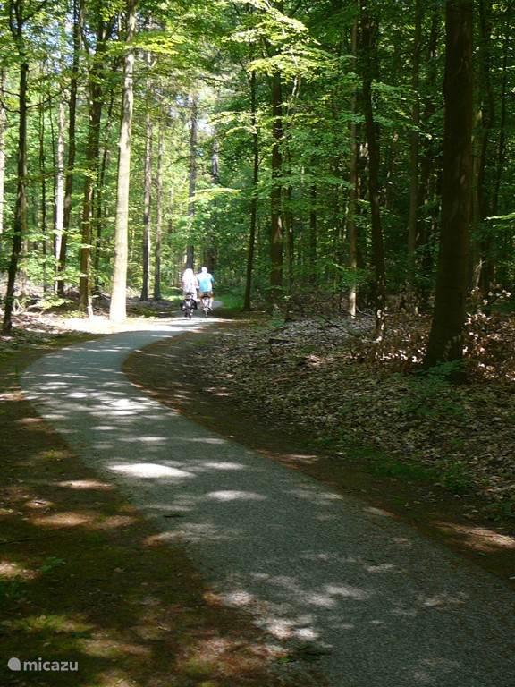Fietsroutes door de bossen en dorpen