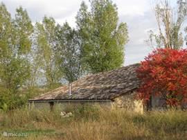 Ook in de herfst is een verblijf in de Residence een bijzondere ervaring.