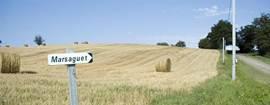 Dit landweggetje eindigt bij onze boerderij.