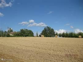 Domaine Marsaguet ligt helemaal vrij op een heuvelrug en wordt omgeven door boerenland.