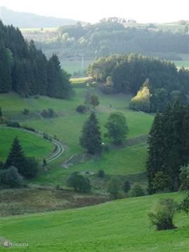 In het bosrijke Thüringerwoud zijn de open dalen verrassend mooi.