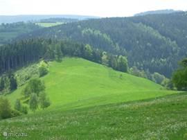 Een van de mooie, ruime en rustige dalen in de omgeving.