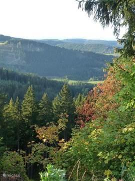 Herfstkleuren beginnen aan de Rennsteig.