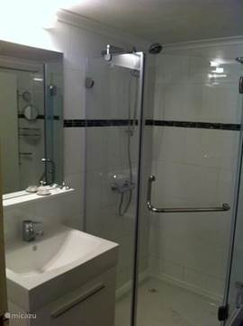 In 2013, fully renovated bathroom.