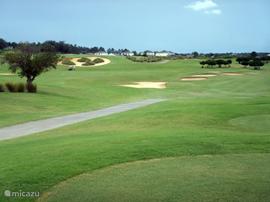 De highlands reserve golf course is een 18-hole golfbaan. U heeft GRATIS ONBEPERKTE teetime. Alleen het gebruiksrecht van de golfcart  dient u rechtstreeks te voldoen bij het clubhuis.