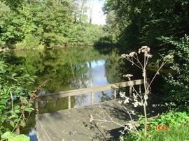 Dit is de voormalige kleiput van een steenfabriek. In het midden is het nu nog 7 meter diep. De ijsvogel wordt er vaak gezien.Vlonder aan het water waarop u kunt zitten en waarop u kunt vissen op o.a.karper, grenzend aan de tuin.