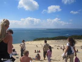 Dune de Pilar with super panoramic views of the forest and the sea. Ideal for a bike ride.